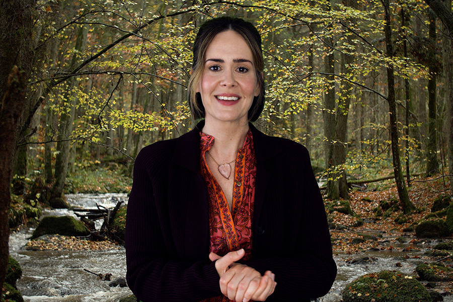 "In ""Coastal Elites,"" which is available for streaming through HBO, Sarah Paulson plays a meditation guru who guides her Zoom audience in some much needed breathing exercises after her mom tells her that this whole ""corona thing"" will just blow over."