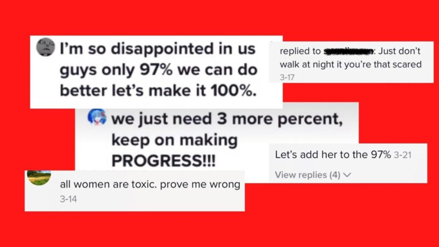 Above are examples of comments that Gen Z boys posted on TikTok in response to a recent United Nations report that revealed that 97% of women in the U.K. have been sexually harassed.